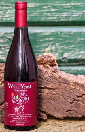 Terre sospese – vino rosso Wild Yeast