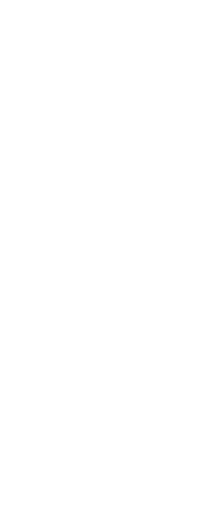 Passiti