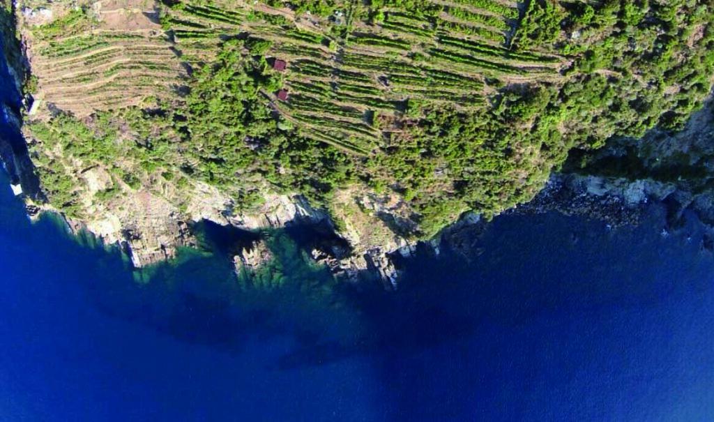 Litan Cinque Terre - Costa De Sera DOC